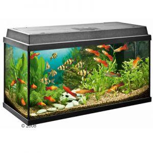 Adoucisseur d'eau pour aquarium